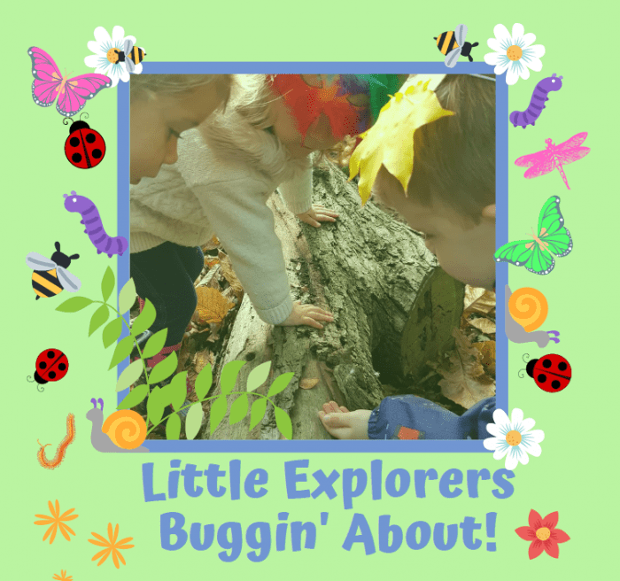 Little Explorers Buggin About